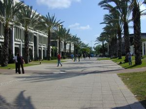 Leigh Engineering Faculty Boulevard at Tel Aviv University; photo via https://en.wikipedia.org/wiki/Tel_Aviv_University#/media/File:Eng_boul.jpg